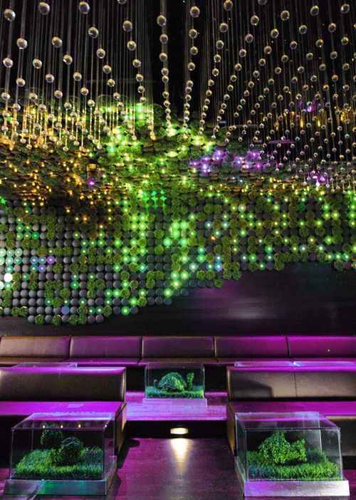 Greenhouse-nightclub-by-bluarch-architecture